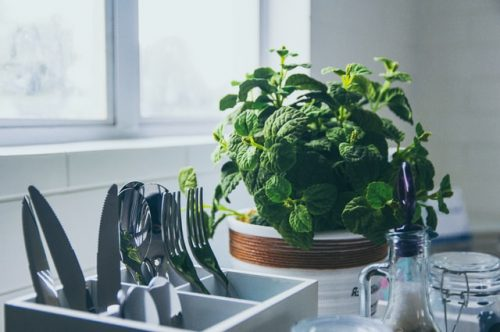 Simple Ideas for Your Kitchen Herb Garden