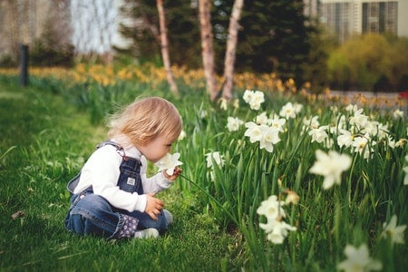 15 Gardening Activities for Preschoolers and Children Alike