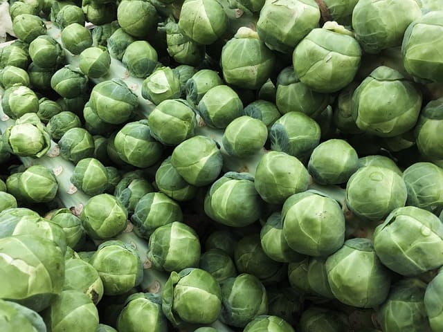 grow brussel sprouts